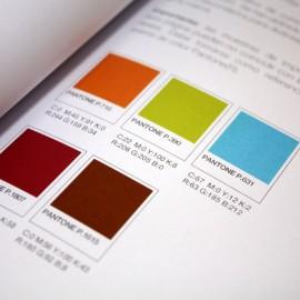 color-marca1