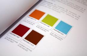 color-marca