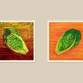 ilustraciones para recetas