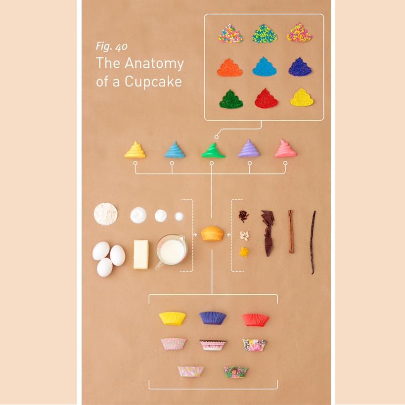 anatomy-of-cupcake